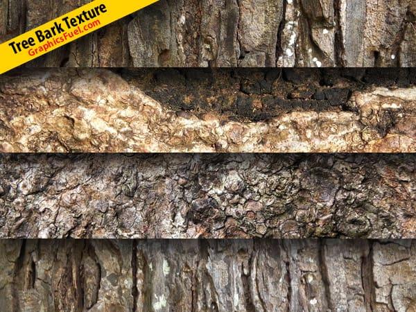 wpid-tree-bark-texture.jpg